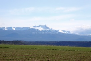 broken top mountain oregon | Photos and Images | Nature