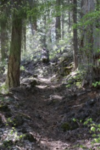 lava rock hiking trail Oregon | Photos and Images | Nature