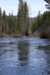 metolius river oregon | Photos and Images | Travel