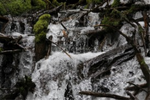 Fresh Water Falling In The Mountains | Photos and Images | Nature