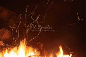 Dancing Camp Fire Light | Photos and Images | Miscellaneous