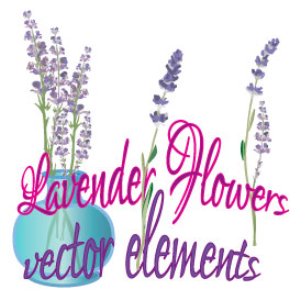 lavender flowers vector elements