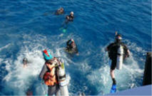 Resort Scuba Diver NEW | eBooks | Sports