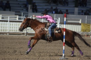 and away we go horse and rider | Photos and Images | Sports