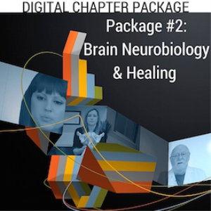 digital chapter package #2: brain neurobiology & healing