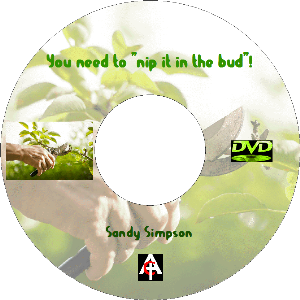 You Need To Nip It In The Bud (MP3) | Movies and Videos | Religion and Spirituality