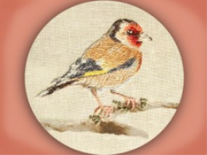 goldfinch embroiderers background