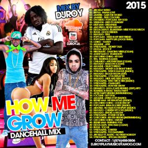 Dj Roy How Me Grow Dancehall Mixtape 2015 | Music | Reggae