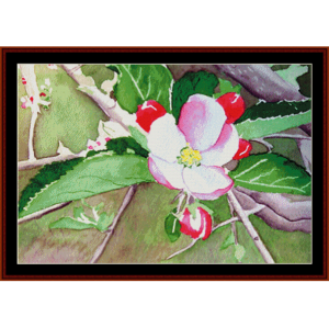 Apple Blossom - Floral cross stitch pattern by Cross Stitch Collectibles | Crafting | Cross-Stitch | Wall Hangings