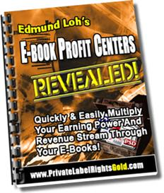 eBook Profit Centers Revealed | eBooks | Internet