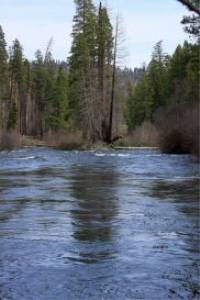 a river divided metolius river oregon
