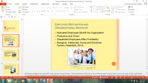 Employee Motivation and Organizational Behavior | Documents and Forms | Research Papers