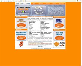 Business online opportunity turnkey web site | Software | Business | Other