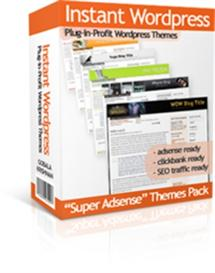 Instant Wordpress Themes With Resale Rights | Other Files | Patterns and Templates