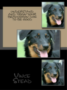 understand and train your beauceron dog to be good