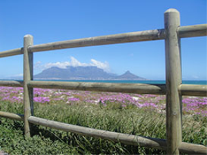 Cape Town View | Photos and Images | Nature