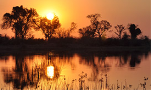Okavango Delta Sunset | Photos and Images | Nature