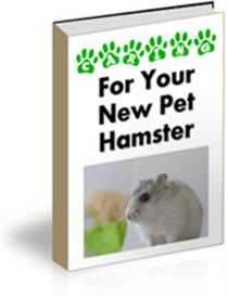 Caring For Your New Pet Hamster | eBooks | Home and Garden