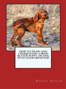 how to train and raise a irish setter puppy or dog with good behavior