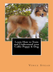 learn how to train and understand your collie puppy & dog