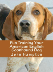 fun training your american english coonhound dog