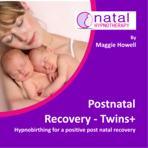 First Additional product image for - Hypnobirthing for post natal recovery with twins+