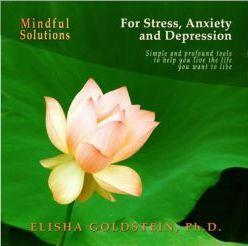 mindful solutions for stress, anxiety, and depression (e-book transcri