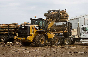 CAT Wheel Loader in Action | Photos and Images | Technology