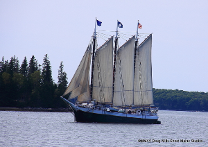 woodenboat sail in