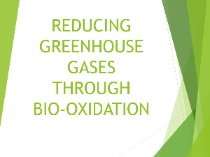 reducing greenhouse gases through bio-oxidation