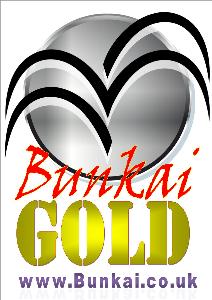 Bunkai Gold 2016 week 43 | Movies and Videos | Training