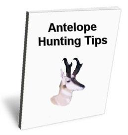 Antelope Hunting Tips - How to Hunt Basics and Fundamentals | eBooks | Outdoors and Nature