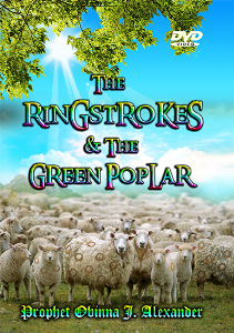 the ringstrokes and the green poplar