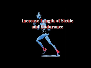 Stride and Endurance Increase (Iphone) | Other Files | Everything Else