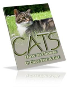 choosing & caring for a cat naturally
