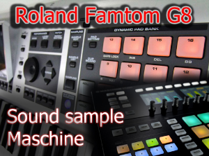 Roland Fantom G8 Maschine Expansion | Music | Soundbanks