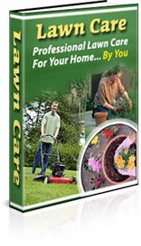 lawn care professional lawn care for your home by you -with private la