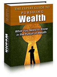The Expert Guide to Pursuing Wealth | eBooks | Internet