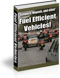 Fuel Efficient Vehicles (PLR) | eBooks | Education