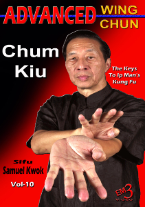 advanced wing chun  vol-10 chum kiu by sifu samuel kwok