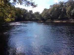 Suwannee River | Music | Classical