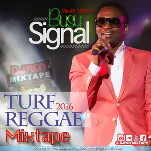 First Additional product image for - Dj Roy Bust Signal Turf Reggae Mix [track Version]