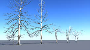 Set of 5 Winter Trees | Other Files | Everything Else
