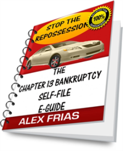 the chapter 13 bankruptcy self-file e-guide
