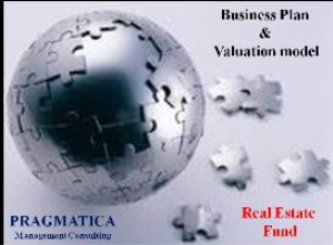 private equity-venture capital fund valuation model & business plan.