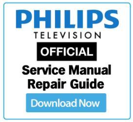 philips 29pt8667 service manual & technicians guide