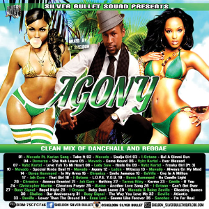Silver Bullet Sound - Agony Dancehall & Reggae Mix | Music | Reggae