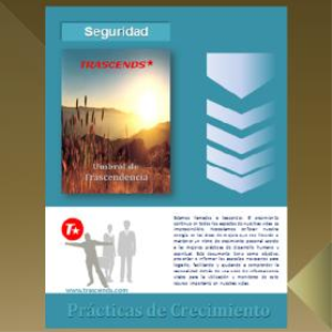 Seguridad | eBooks | Other