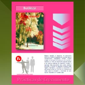 Sutileza | eBooks | Other
