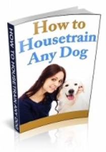 how to house train any dog